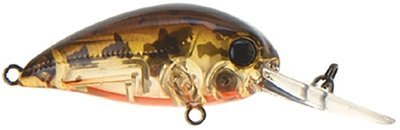 REA605 - Ghost Brown Shad